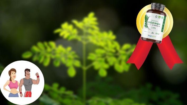 Bästa Moringa-tillskotten 2021 - Bäst i Test & Köpguide